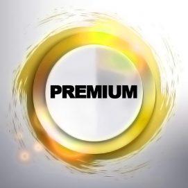 PREMIUM category sky web solution social service